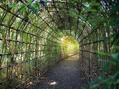 ハギのトンネル
