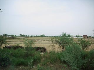 インドの農村風景