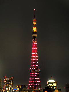 東京タワーのダイヤモンドヴェール