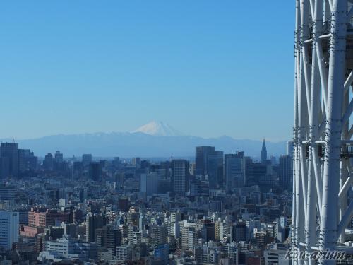 東京スカイツリー イーストタワーからの眺め