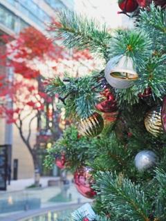 クリスマスツリーとモミジ