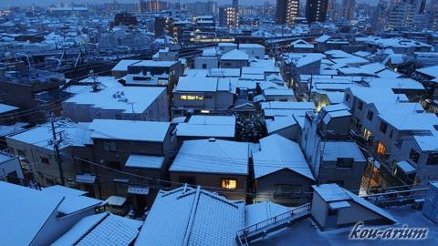 降雪した東京