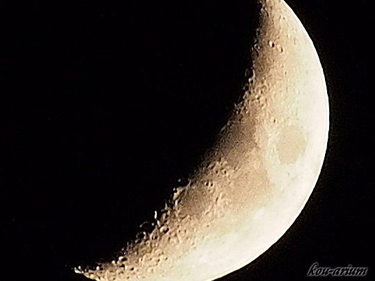 汐入公園からの月の眺め