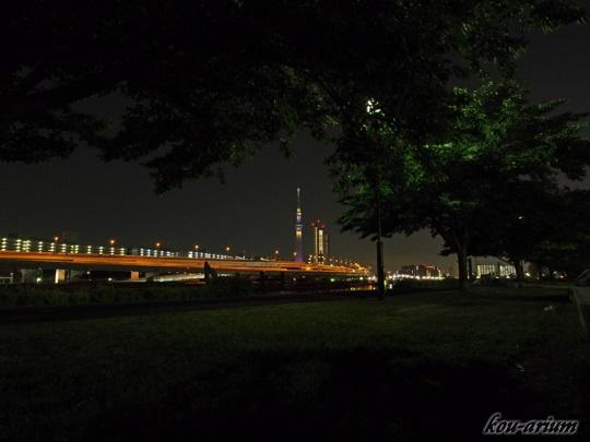 汐入公園から見た東京スカイツリー