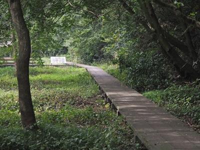 大町自然観察園