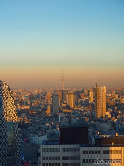 東京都庁舎展望室から東京スカイツリーの眺め