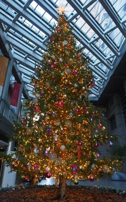 新宿パークタワーのクリスマスツリー2016