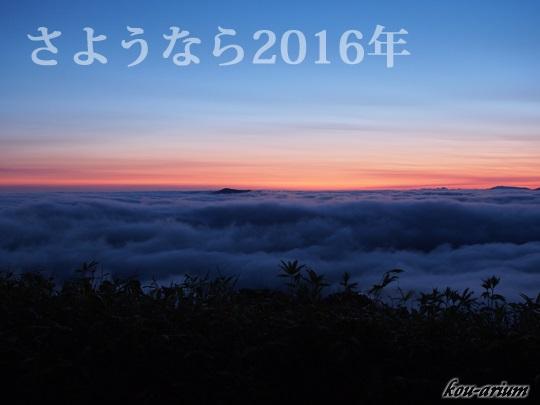 2016年大晦日