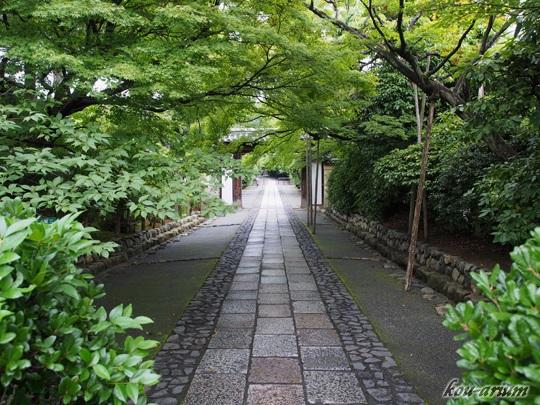 龍安寺への参道