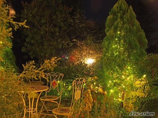 花の森クラリスの夜の庭