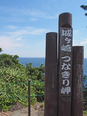 伊豆四季の花公園のつなきり岬
