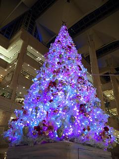 横浜ランドマークタワーのクリスマスツリー