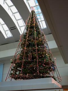 クイーンズタワーのクリスマスツリー