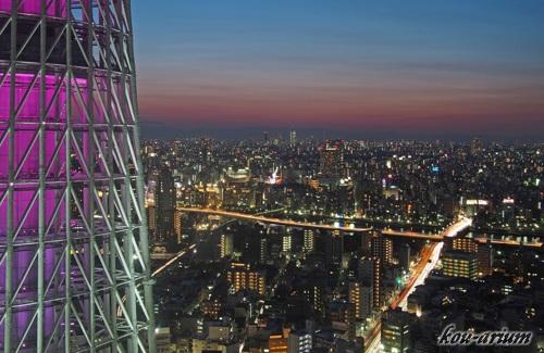 東京スカイツリー イーストタワーからの夕景の眺め