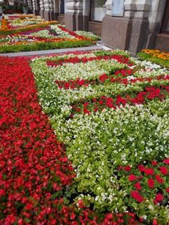 グム百貨店前の花壇