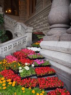 グム百貨店入り口階段の花壇
