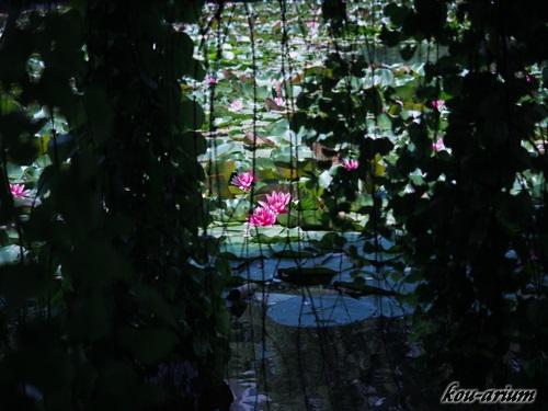 北海道旧本庁舎前の池